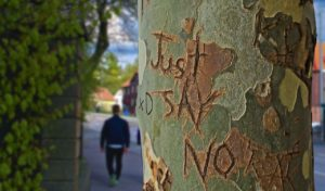 """Tree that says """"just say no."""" When our inner voice is warning us to say """"no."""""""